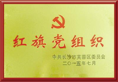 长沙市芙蓉区红旗党组织